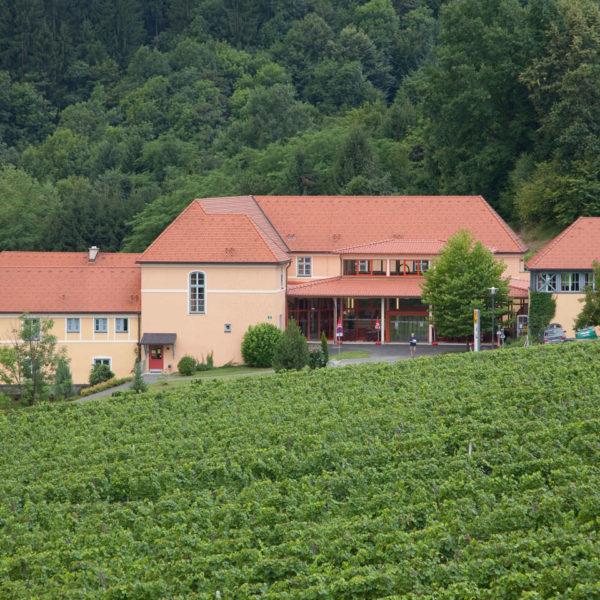 Hotelansicht vom JUFA Hotel Deutschlandsberg Sport-Resort mit Weinberg. Der Ort für erfolgreiches Training in ungezwungener Atmosphäre für Vereine und Teams.